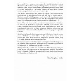El arte puertorriqueño y la cultura taína