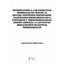 Introducción a las conductas criminales de fraude al seguro, incendios provocados, falsedades instrumentales o contables y cibercriminalidad